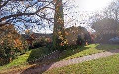 1 Clark Street, Wattle Park SA