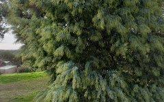 133 Yarrabee Road, Greenhill SA