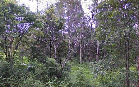 55 Bullgarra Springs Road, Wilsons Creek NSW