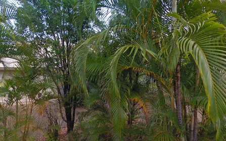 10/744 Pacific Highway Sapphire Beach, Coffs Harbour NSW