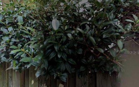 6 Egan St, Newtown NSW 2042