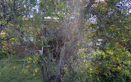 13 Burge Close, Holt ACT