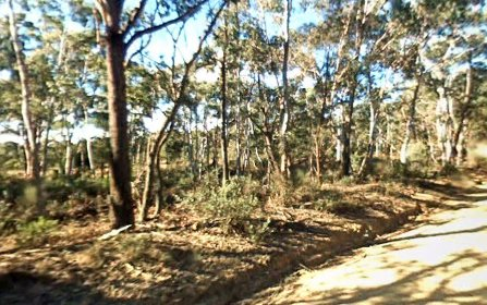 884 Charleys Forest Road, Mongarlowe NSW
